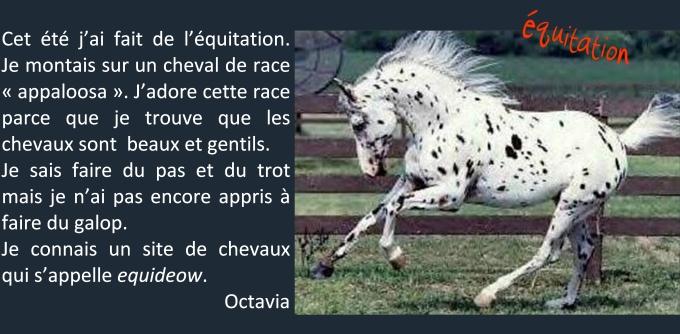 octavia blog