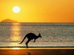 11 australie
