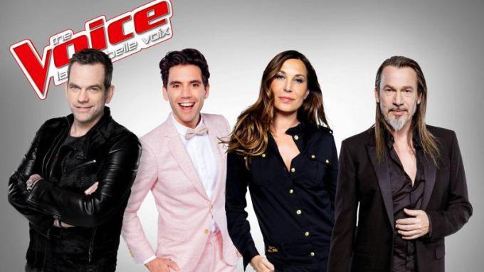 Shine France - TF1